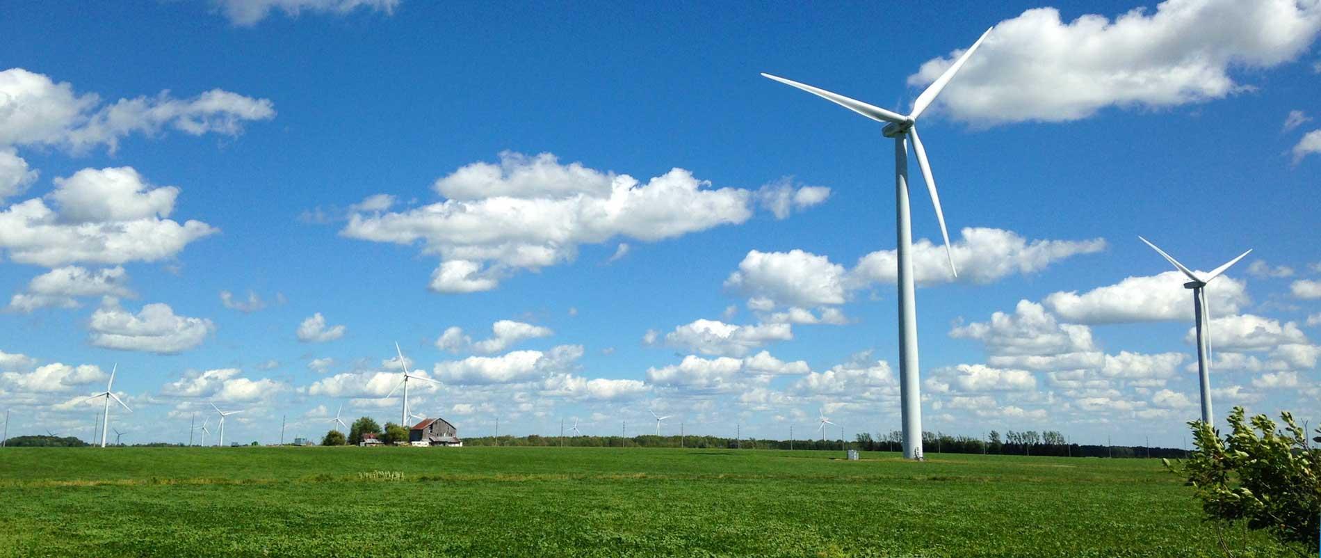 Übersetzungen Umweltmanagement und Nachhaltigkeit